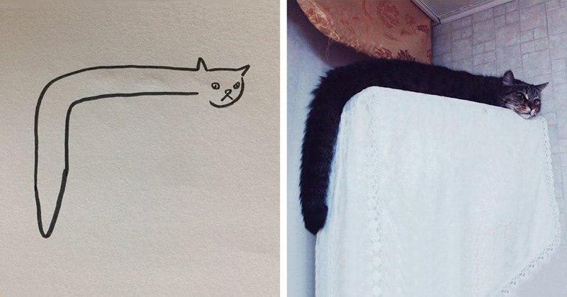 Когда ваш учитель говорит, что вы не умеете рисовать кошек, но вы с этим не согласны