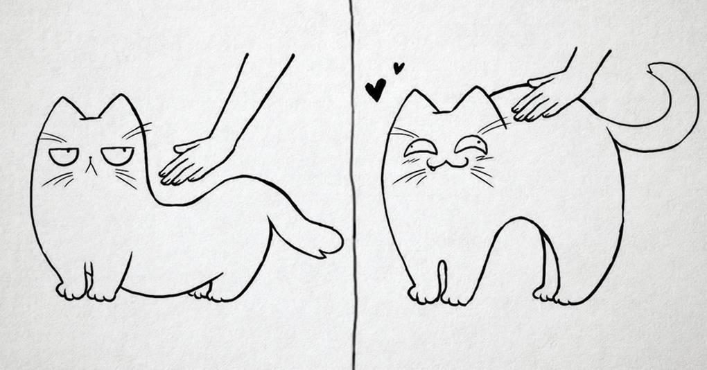 20 честных комиксов о том, как живётся человеку, рискнувшему завести кота