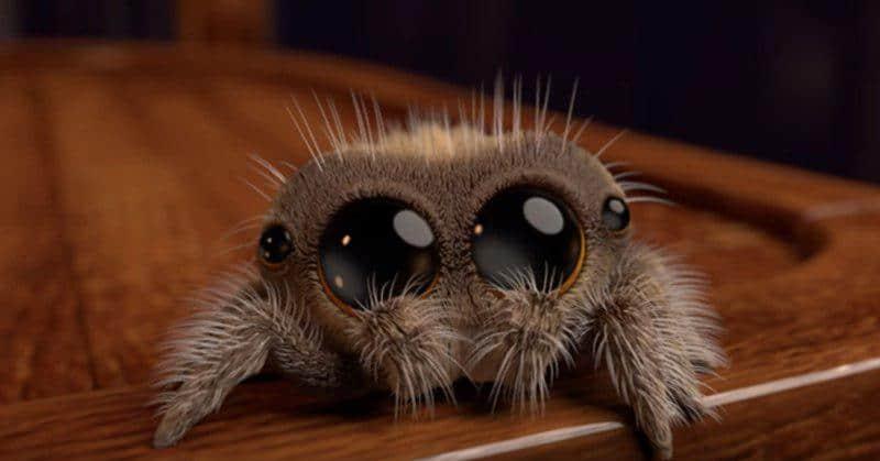 Этот милый ролик от аниматора Disney заставит вас полюбить пауков, даже если вы их до смерти боялись