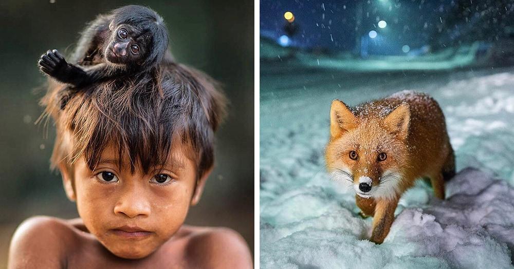 National Geographic назвал самые популярные фотографии 2017 года, которые выбрали пользователи Инстаграма