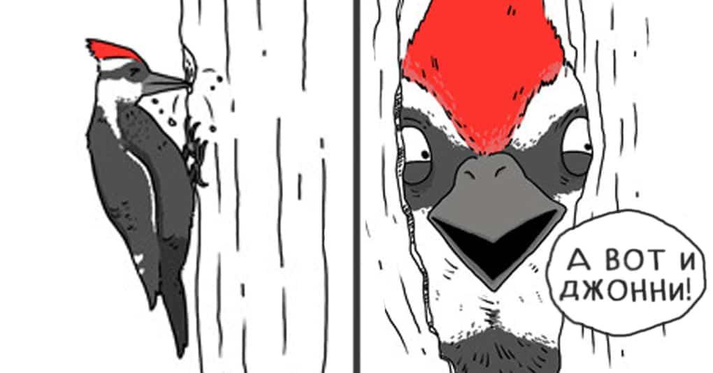 15 комиксов, которые покажут, о чём говорили бы животные, если бы могли