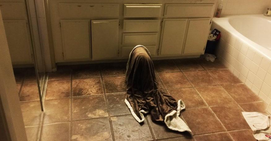 Мужчина проснулся посреди ночи от странных звуков, встал и обнаружил это чудовище. Которое, как оказалось, просто вышло попить водички