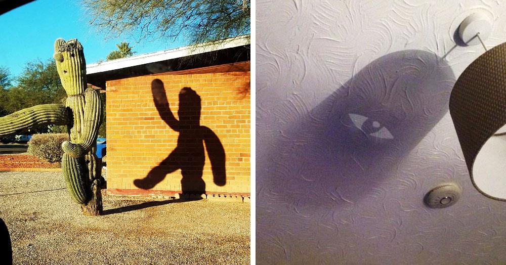 Пользователи поделились снимками, на которых тени предметов будто живут своей жизнью, и выглядит это довольно необычно