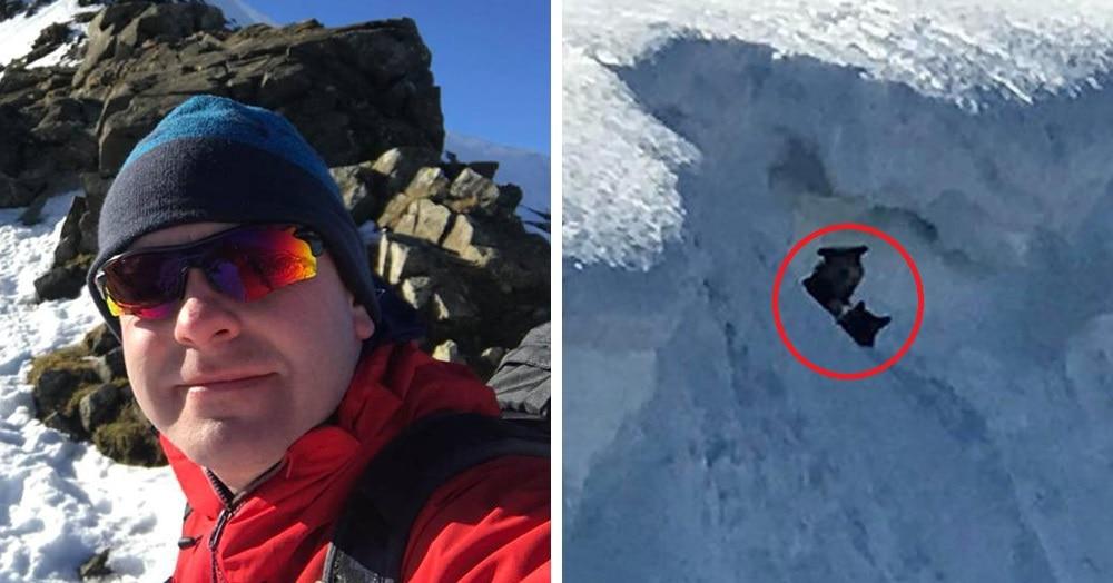Две собаки потерялись в горах и провели там двое суток. Их уже не надеялись найти, но вдруг альпинисты увидели на снежном склоне странные чёрные точки