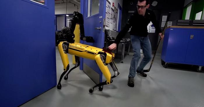 Человек с клюшкой встал на пути робота-собаки, и эта эпичная битва могла закончиться в пользу человечества. Но нет