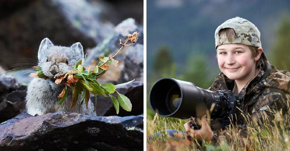 Этому мальчику всего 13 лет, а он уже дважды победил в престижном конкурсе фотографий дикой природы. И по его работам совсем не скажешь, что автор — ребёнок