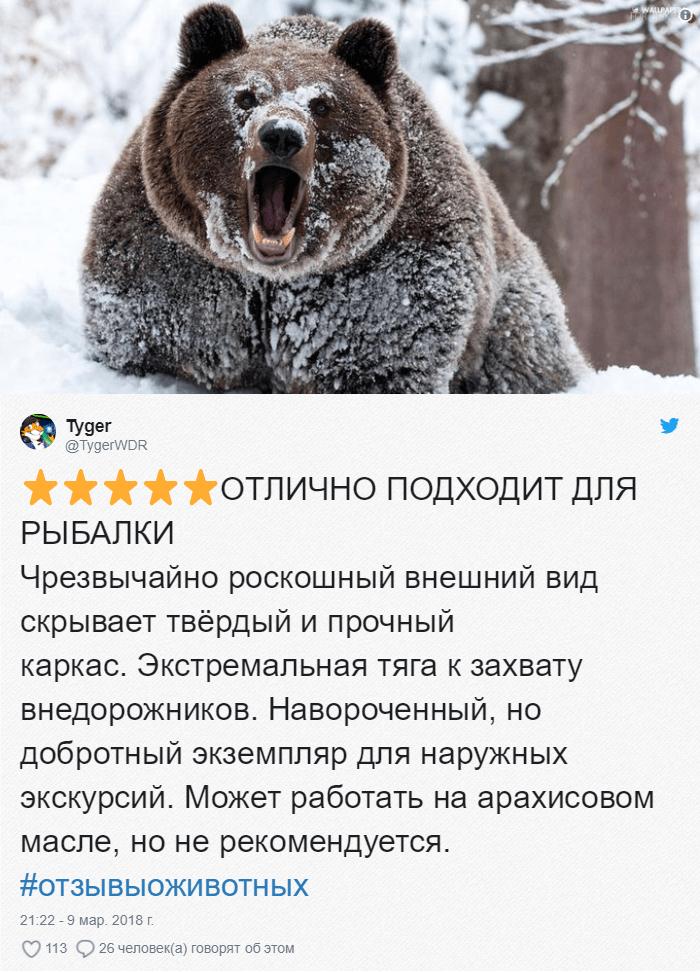 18 Зоопарки пишут о своих животных отзывы в стиле сайта Amazon. Получилось очень забавно, 5 из 5