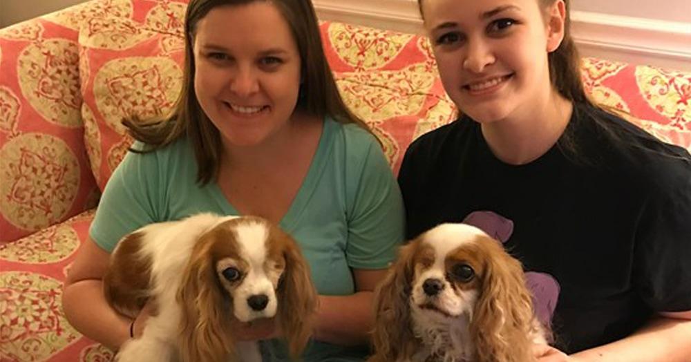 Девушка была очень удивлена, увидев точную копию своей собаки. Ведь они были такими необычными, что их встреча была почти невозможна