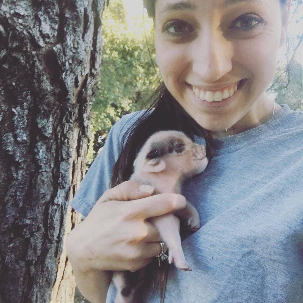 bentleysbarnyard_28428836_354601978349462_1405394259384729600_n Эта американка очень любит животных. Однажды она купила свинку, чтоб её не съели, но свинка оказалась с сюрпризом