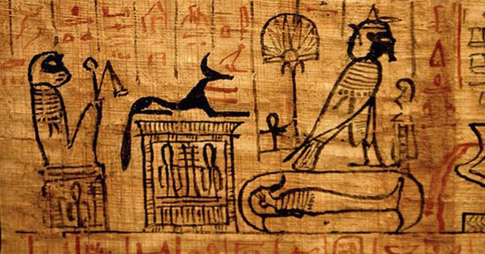 Учёные перевели древнегреческий папирус, который рассказывает потрясающую историю спасения котёнка. Кажется, это отличный сюжет для нового фильма