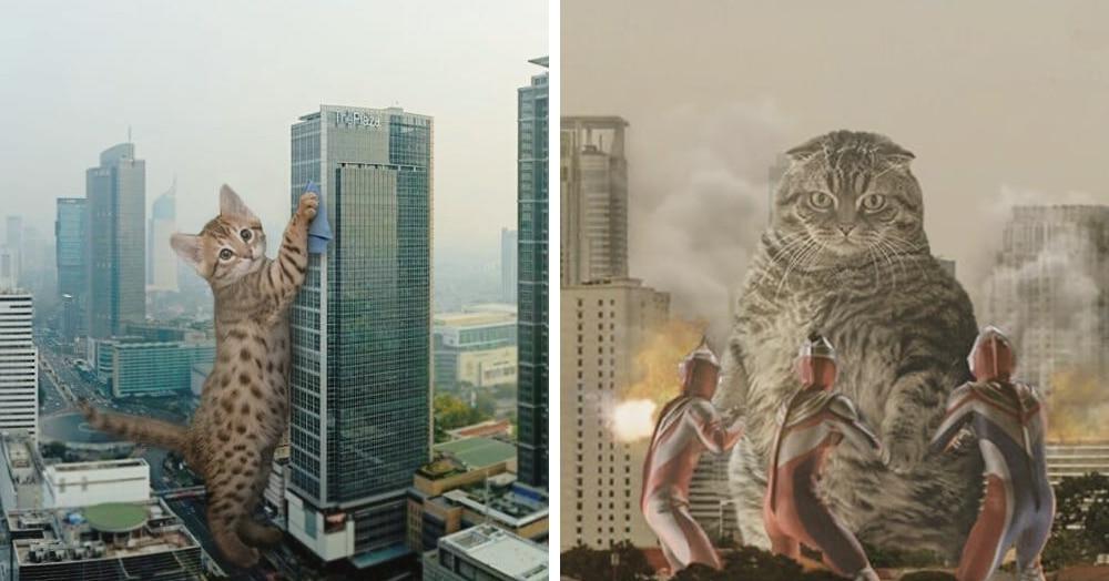 Котзиллы наступают! Художник из Индонезии помещает гигантских котов в городские ландшафты