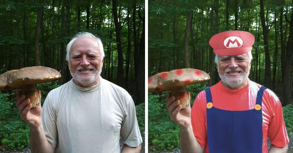 «Гарольд, скрывающий боль», показал гриб и тут же стал героем фотошоп-битвы