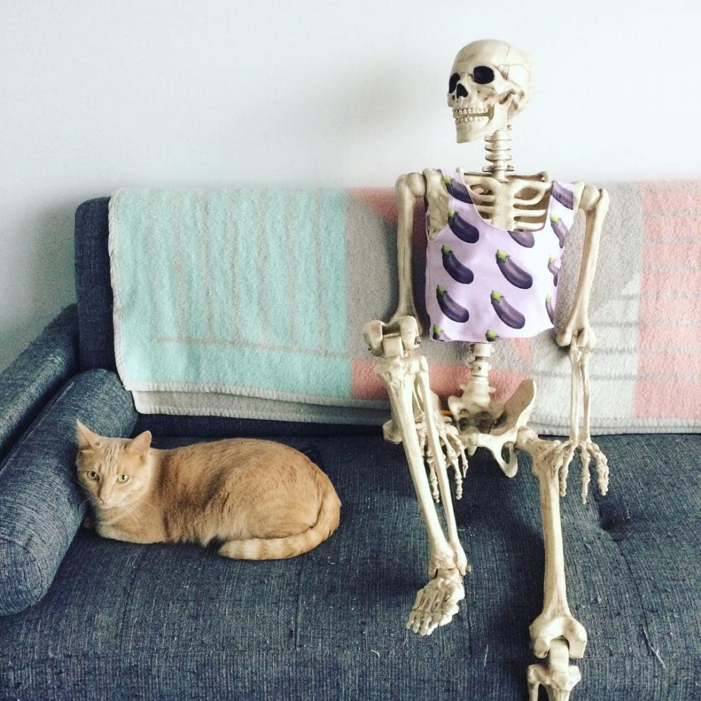 смешные картинки с скелетами пластический