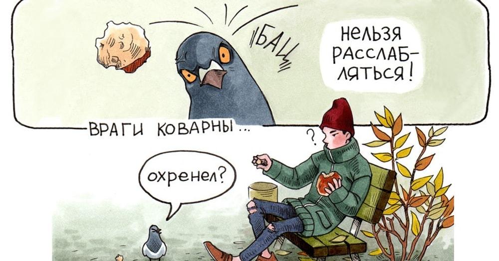 Художница создала забавную серию комиксов о голубе-мизантропе Геннадии и его суровых пернатых товарищах
