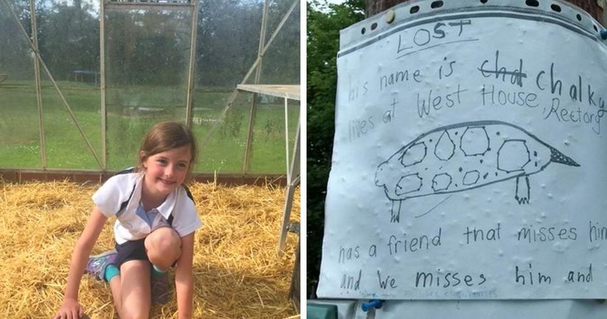 Девочка развесила трогательные объявления о пропавшем друге, нарисовав его, как умеет. И они сработали!
