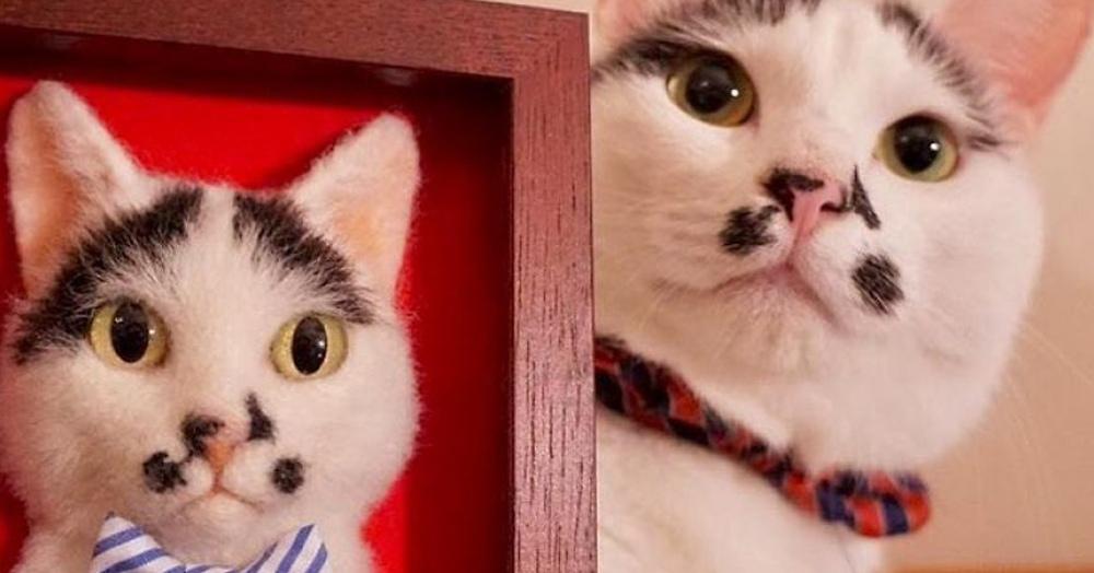Японка создает шерстяные 3D-портреты кошек по фотографиям, и их можно легко перепутать с оригиналом
