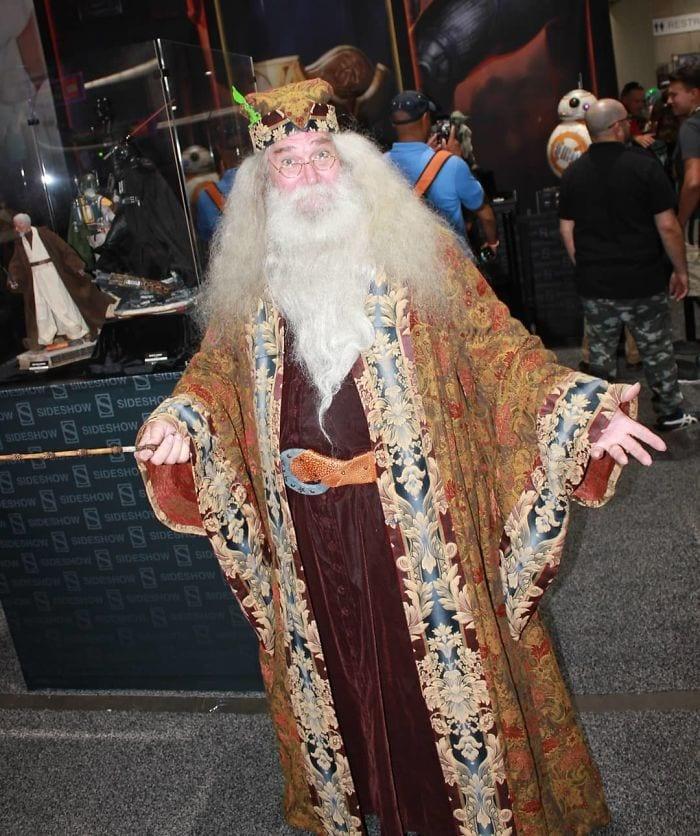 Дамблдор, Гарри Поттер