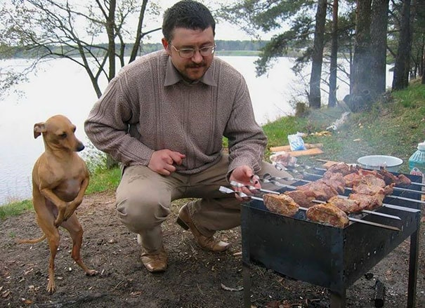 Добби, спасибо, мастер для барбекю