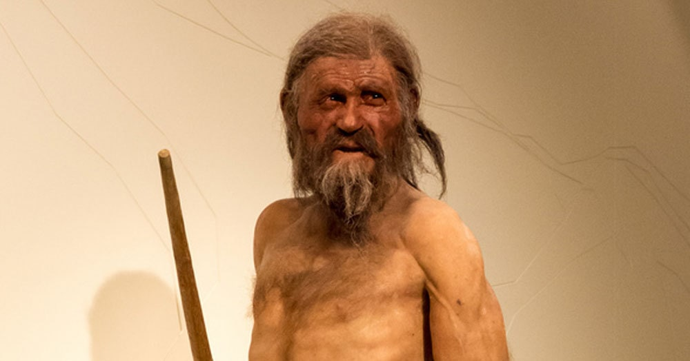 Учёные воссоздали последний ужин древнего человека. Неплохо, но самим пробовать не хочется