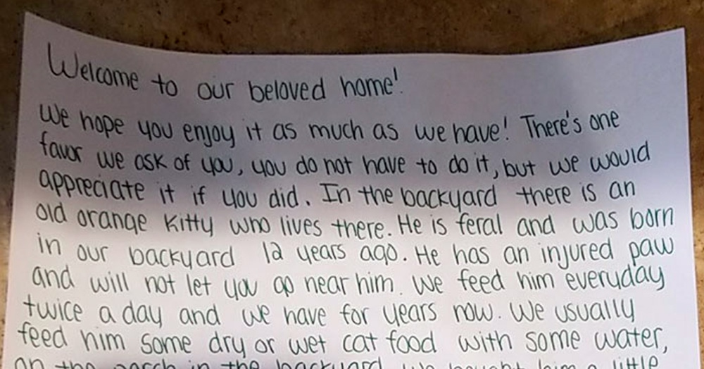 Девушка переехала в новый дом и узнала, что она там не одна. Ведь старые жильцы оставили ей «наследство»