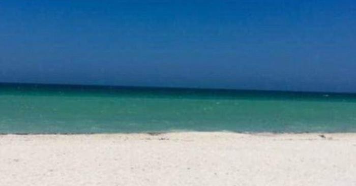 В сети появилась новая оптическая иллюзия: снимок, на котором изображён пляж. Или дверь. Или пляж