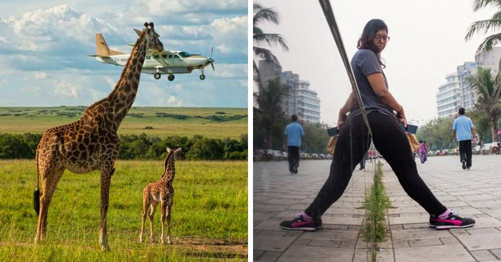 20 коварных фотографий, на которых происходит одно, а видится совершенно другое