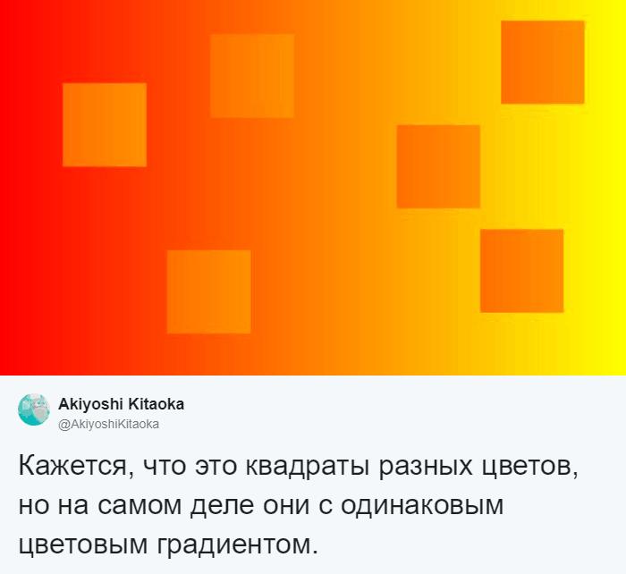 Японский психолог создал иллюзию с квадратом, меняющим цвет. И ваше зрение в который раз вас обманет 7