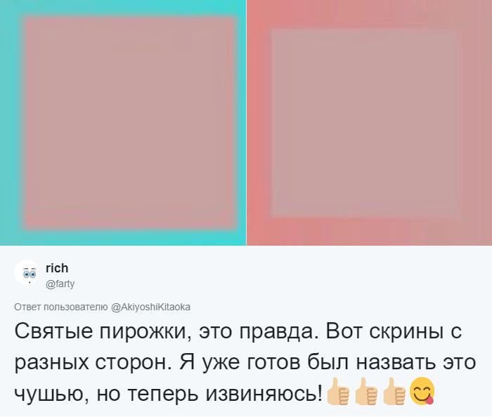 Японский психолог создал иллюзию с квадратом, меняющим цвет. И ваше зрение в который раз вас обманет 5
