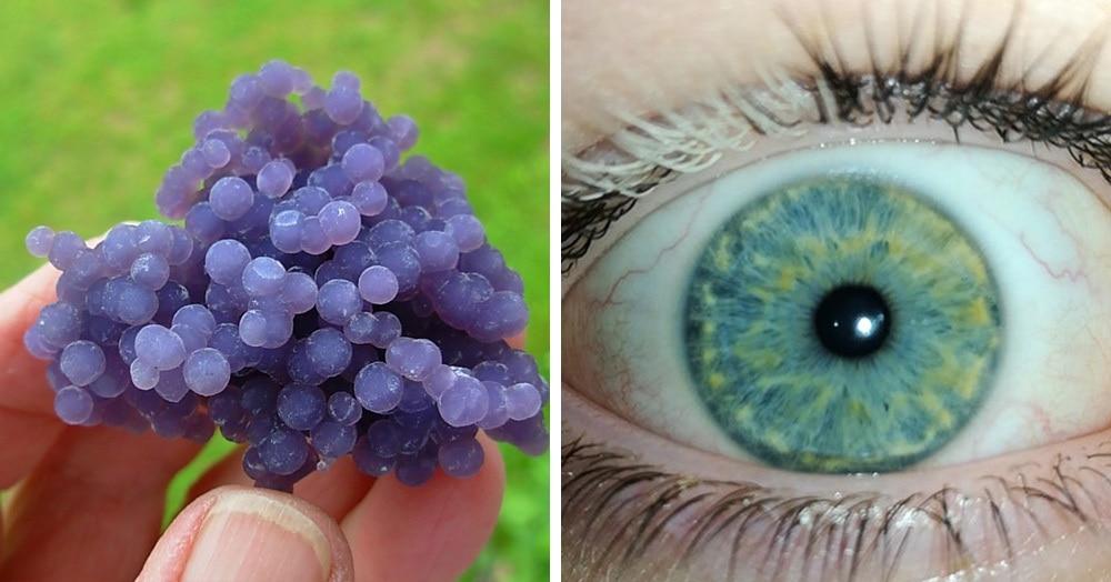 18 фотодоказательств того, что природа легко может удивить даже тех, кто считает, что видел всё