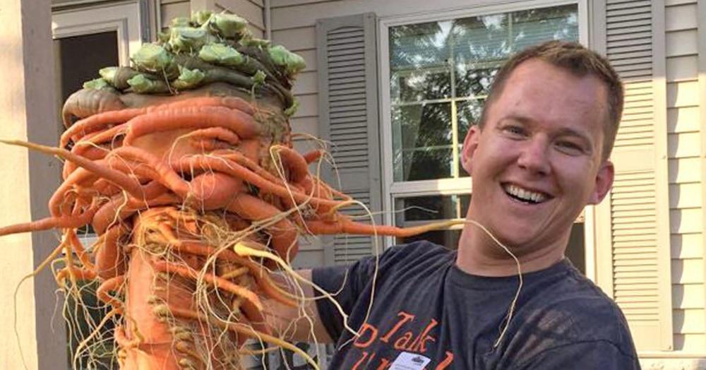 Мужчина вырастил огромную 10-килограммовую морковь, и она больше похожа на дикого монстра, чем на овощ