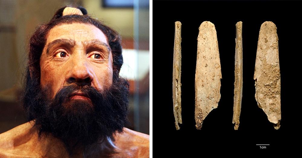 В сети рассказали об инструменте, который был создан 50 тысяч лет назад. Но используется по сей день