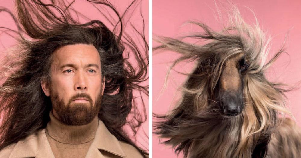 Британский фотограф сделал забавную серию снимков, в которой наглядно показал сходство собак и их хозяев