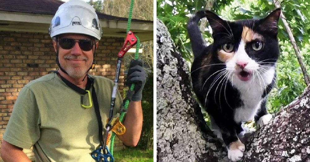 Кот пенсионера застрял на дереве, помочь было некому. Тогда хозяин сам занялся альпинизмом, и вот уже 4 года спасает котиков