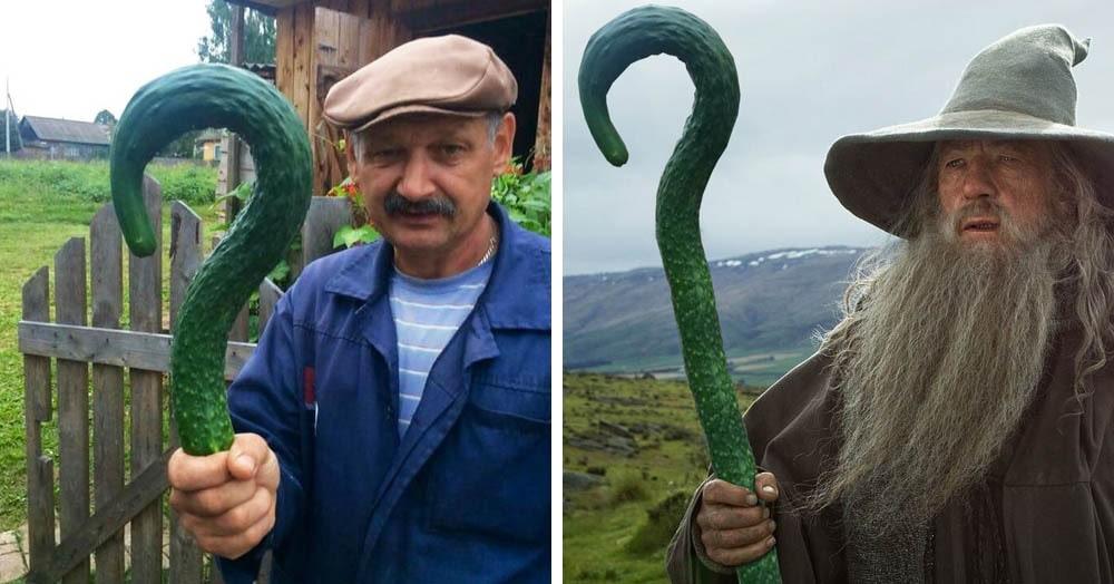 Мужчина показал всему миру свой огурец и тут же стал героем битвы фотошоперов