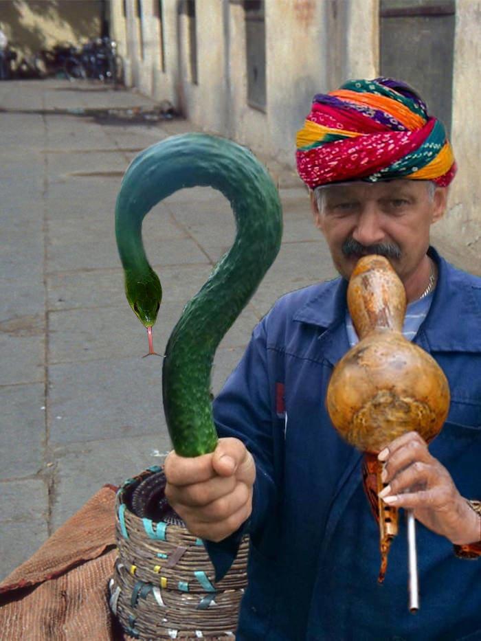 Мужчина показал всему миру свой огурец и тут же стал героем битвы фотошоперов 4