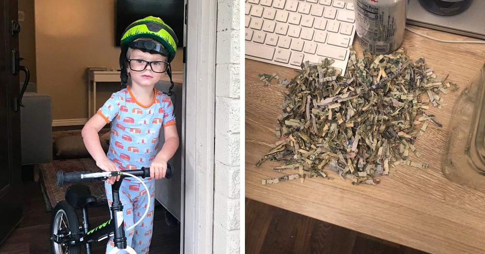 Двухлетний мальчик любил играть со шредером. Родители копили деньги. И вот эти два факта встретились
