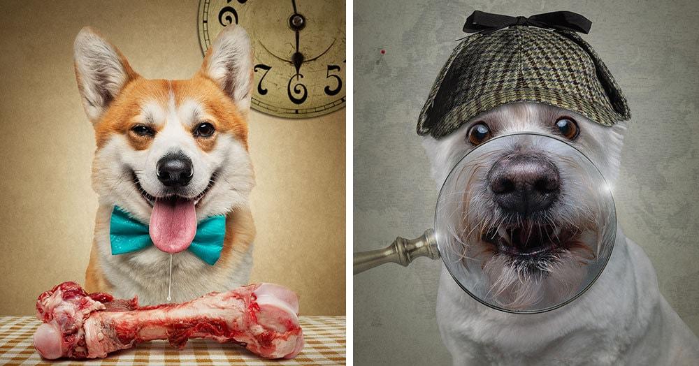 Фотограф из Мельбурна примерил человеческие образы двенадцати собакам и одному дерзкому коту