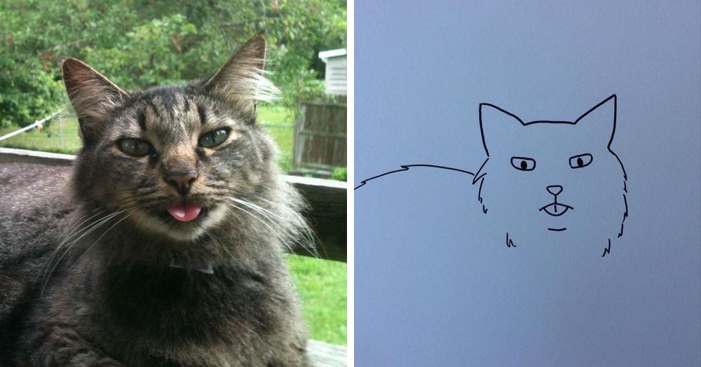 Бразильянка превращает живых котов в нарисованных, и от этого они становятся только смешнее 68