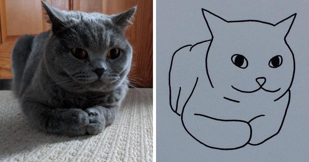 Бразильянка превращает живых котов в нарисованных, и от этого они становятся только смешнее 57