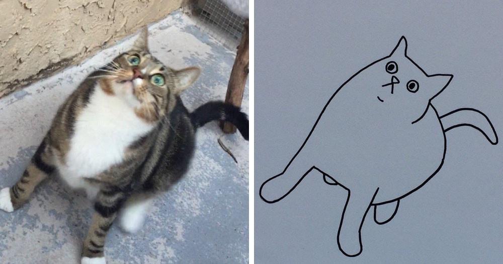 Бразильянка превращает живых котов в нарисованных, и от этого они становятся только смешнее