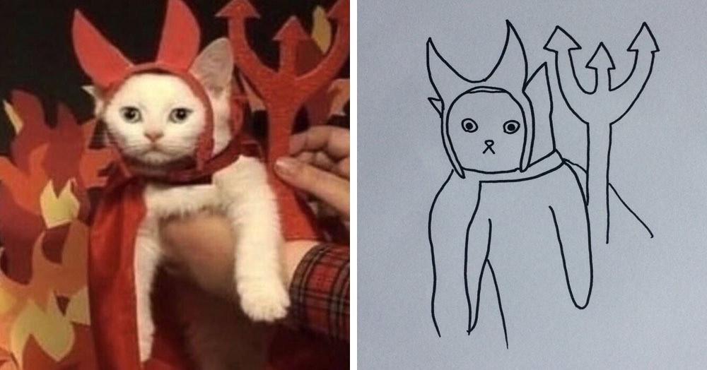 Бразильянка превращает живых котов в нарисованных, и от этого они становятся только смешнее 66