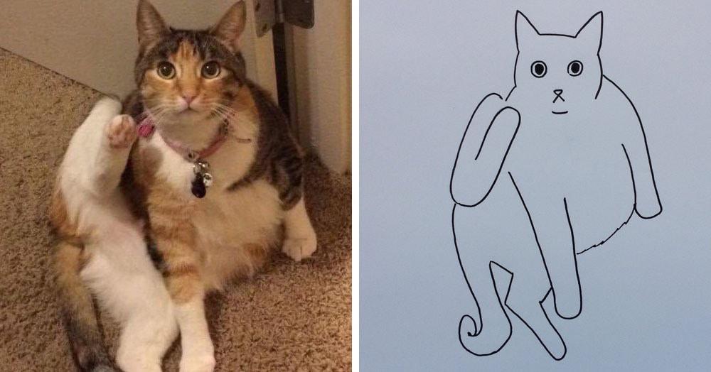 Бразильянка превращает живых котов в нарисованных, и от этого они становятся только смешнее 61