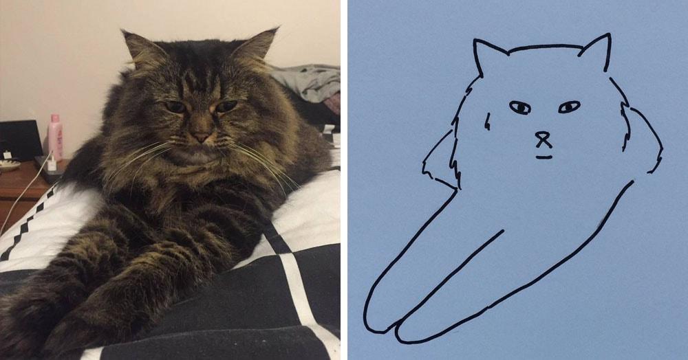 Бразильянка превращает живых котов в нарисованных, и от этого они становятся только смешнее 65