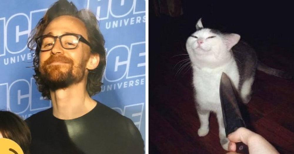 Пользователи сети осознали, что у некоторых смешных картинок «одинаковая энергия». И это новый мем