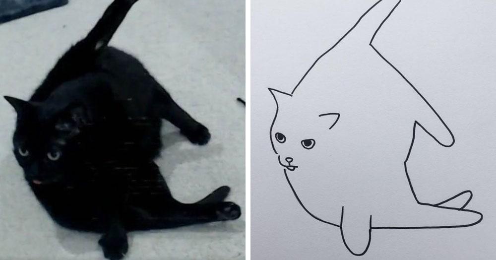 Бразильянка превращает живых котов в нарисованных, и от этого они становятся только смешнее 71