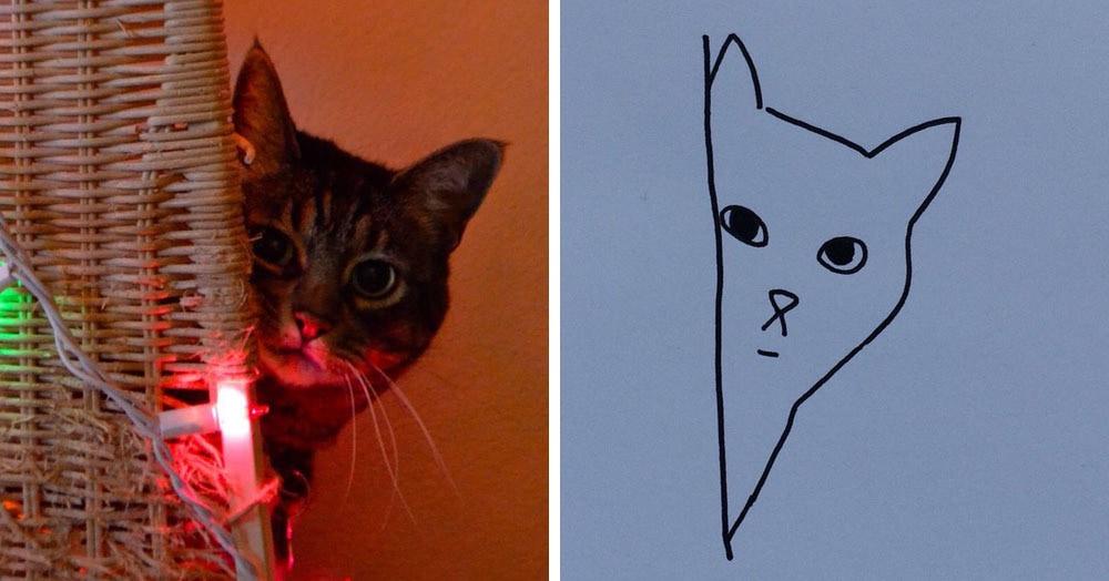 Бразильянка превращает живых котов в нарисованных, и от этого они становятся только смешнее 70