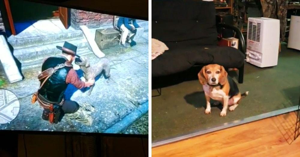 В новой игре Red Dead Redemption 2 можно гладить собак. Но настоящие собаки теперь очень ревнуют