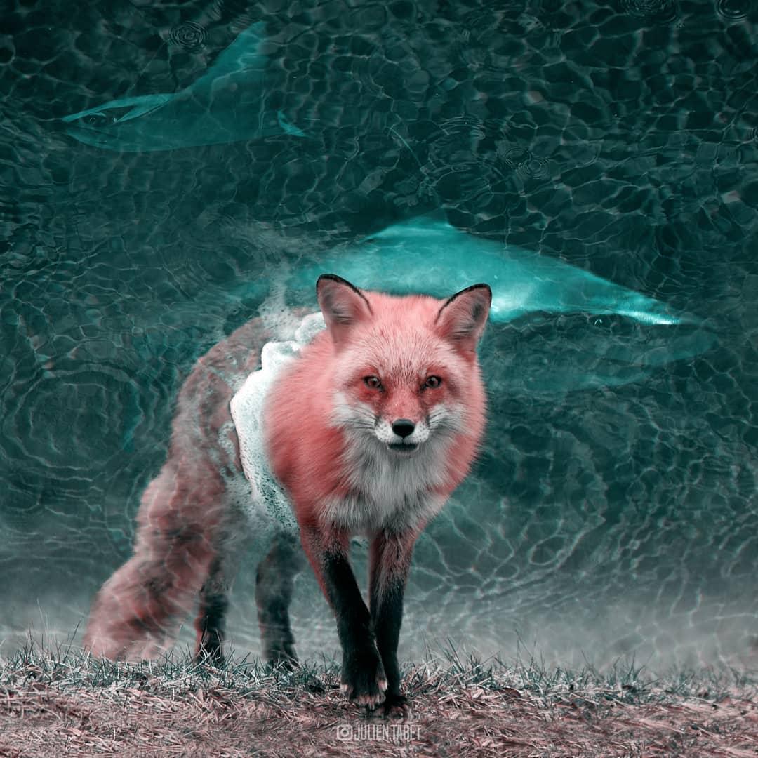 Цифровой художник из Франции изображает сюрреалистичных животных, которые будто пришли из наших снов 79