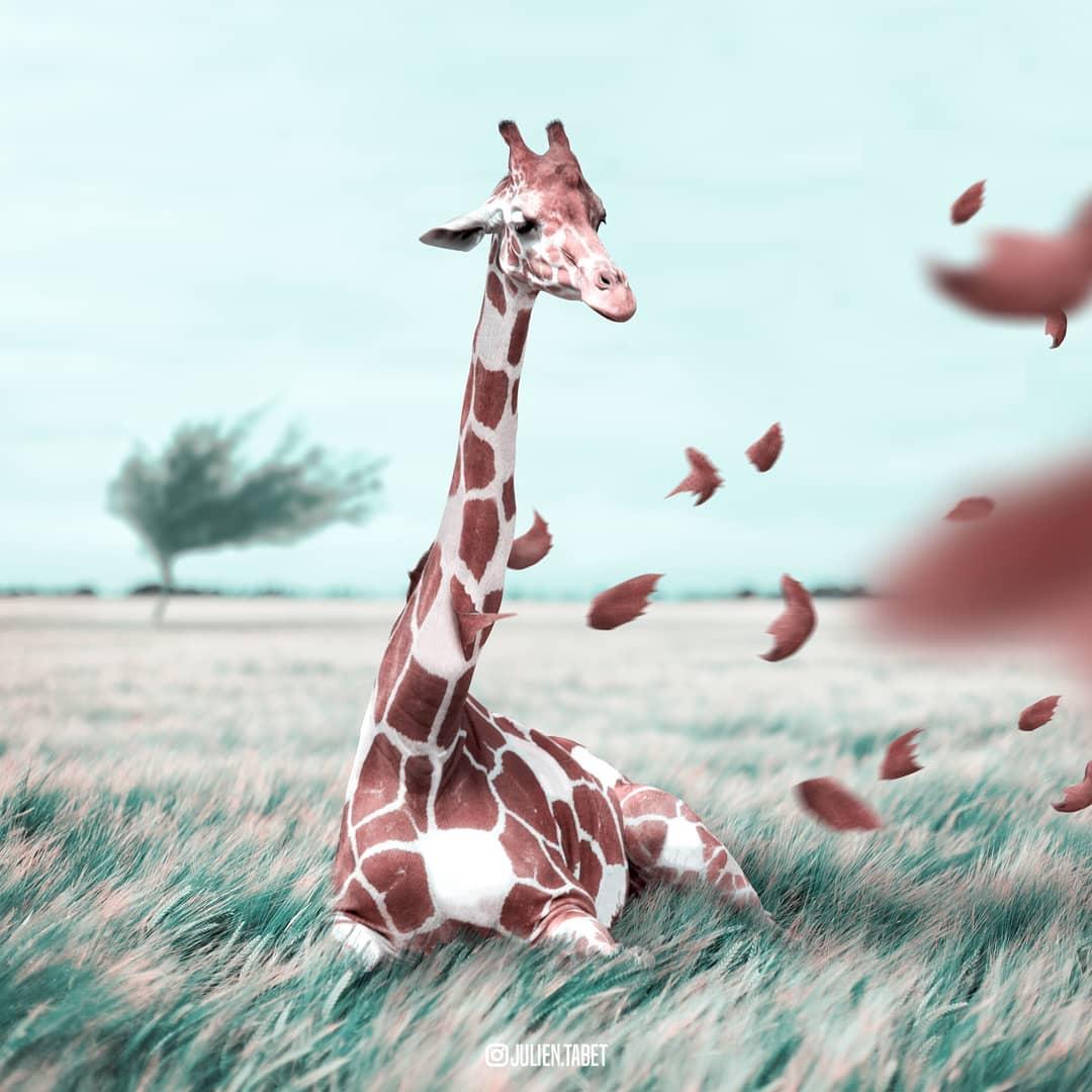 Цифровой художник из Франции изображает сюрреалистичных животных, которые будто пришли из наших снов 81