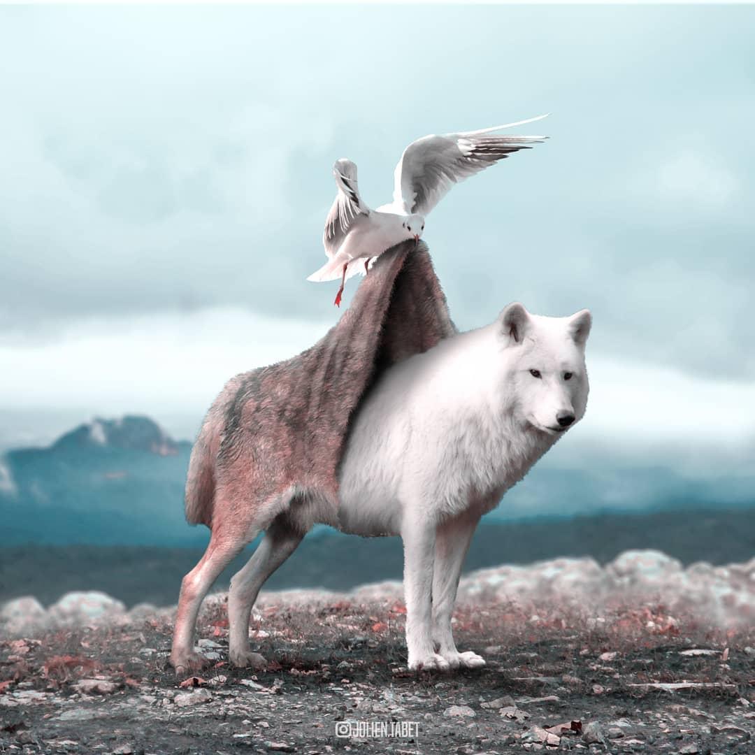 Цифровой художник из Франции изображает сюрреалистичных животных, которые будто пришли из наших снов 76